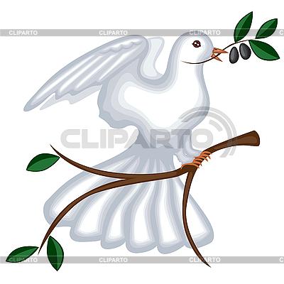 Gołębica z gałązką oliwną | Klipart wektorowy |ID 3113175