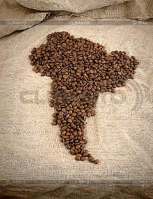 남미의 형태로 커피 콩 | 높은 해상도 사진 |ID 3090999