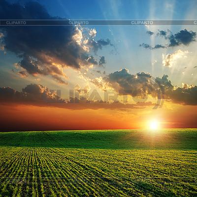Landwirtschaftliches grünes Feld und Sonnenuntergang | Foto mit hoher Auflösung |ID 3091393
