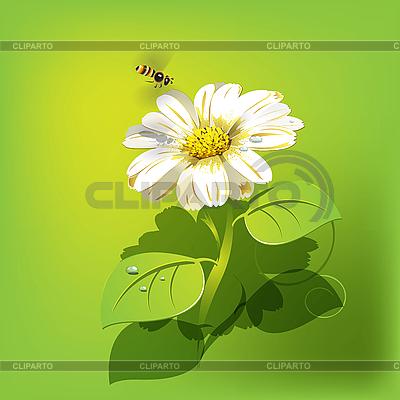 Bee on flower | Stock Vector Graphics |ID 3095945
