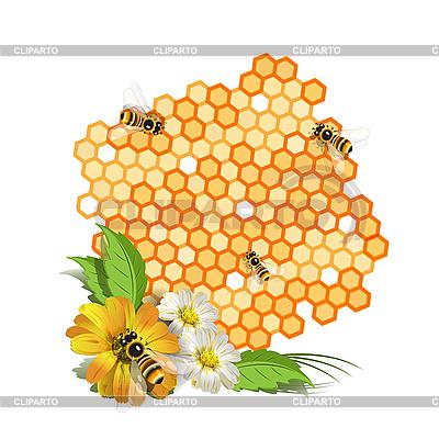 Pszczoły i kwiaty | Klipart wektorowy |ID 3095949