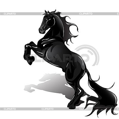Black Horse | Stock Vector Graphics |ID 3095983