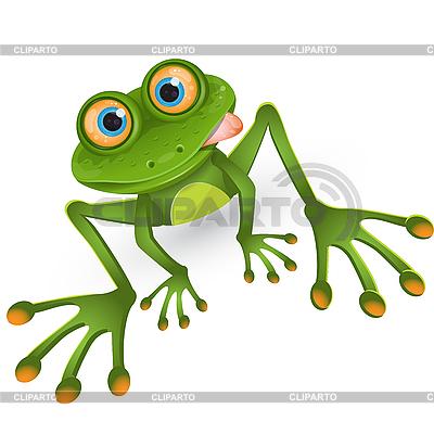 Frog cartoon | Stock Vector Graphics |ID 3096363