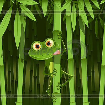 Żaba w bambus | Klipart wektorowy |ID 3096369