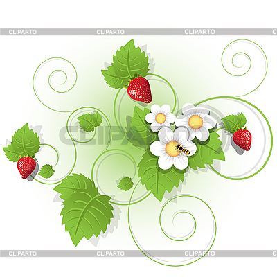 Berries and leaves of strawberry   Stock Vector Graphics  ID 3140977