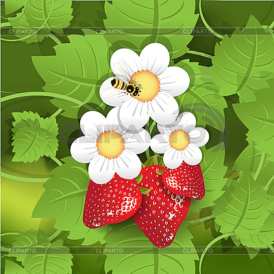 Strawberry and bee | Stock Vector Graphics |ID 3140980