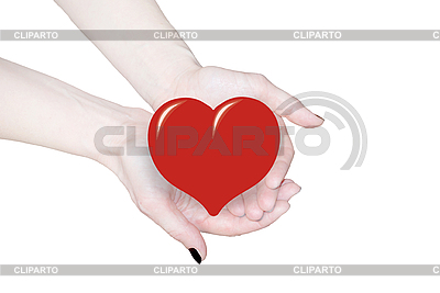 Hands holding heart, love or medical concept  | High resolution stock photo |ID 3123217