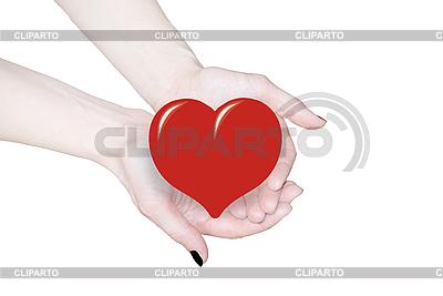 손 심장, 사랑 또는 의료 개념을 잡고 | 높은 해상도 사진 |ID 3123217