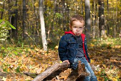 Cute boy and autumn forest   High resolution stock photo  ID 3104656