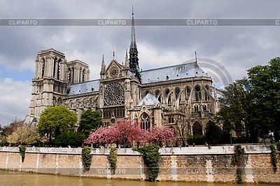 Notre Dame de Paris   High resolution stock photo  ID 3113993