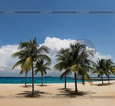 Tropikalnej plaży | Foto stockowe wysokiej rozdzielczości |ID 3114377