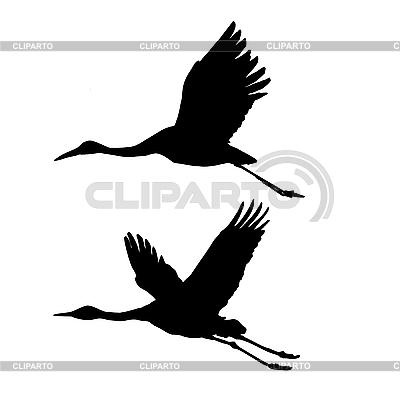 Sylwetki żurawi lecących | Klipart wektorowy |ID 3113293
