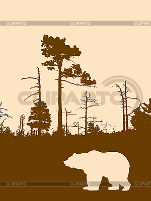silhouette bear on wild wood  | Stock Vector Graphics |ID 3115199