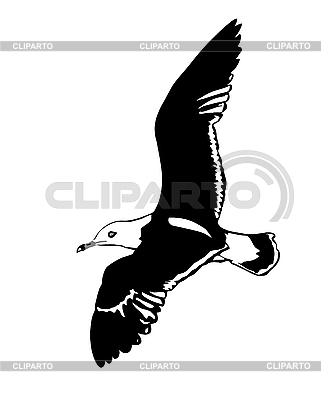 Silhouette einer fliegenden Möwe | Stock Vektorgrafik |ID 3115219