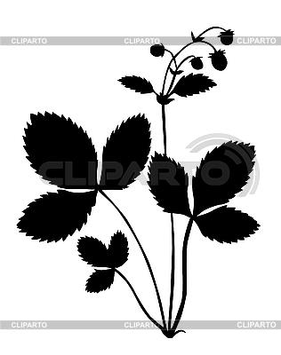 Sylwetka elektrowni truskawkowym | Klipart wektorowy |ID 3115797
