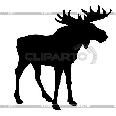 Silhouette eines Elches | Stock Vektorgrafik |ID 3202604