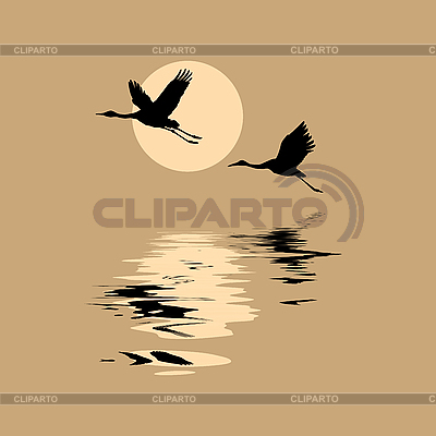 Silhouettes of flying cranes | Stock Vector Graphics |ID 3202993