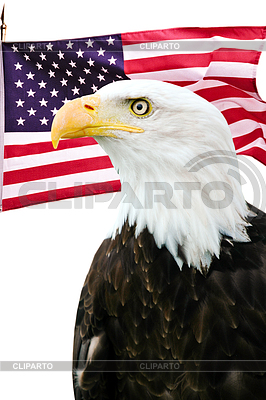 Bald eagle with American flag | High resolution stock photo |ID 3243091