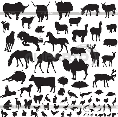 Silhouettes of animals | Stock Vector Graphics |ID 3367879