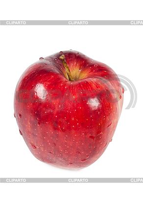 Apple | High resolution stock photo |ID 3150451