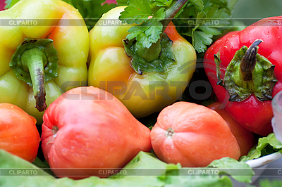 Vegetables | High resolution stock photo |ID 3153390
