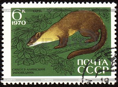Baummarder auf Briefmarke | Illustration mit hoher Auflösung |ID 3174511