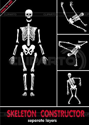 Szkielety | Klipart wektorowy |ID 3160774