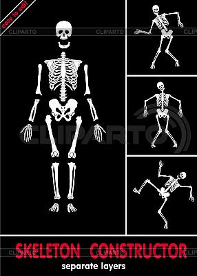 Szkielet konstruktor | Klipart wektorowy |ID 3160776