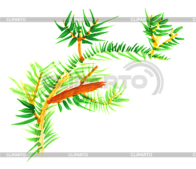 Primitive children`s drawing - fur-tree branch | High resolution stock illustration |ID 3146469