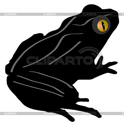 Frosch   Stock Fotos und Vektorgrafiken   CLIPARTO