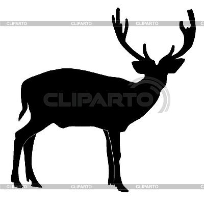 Jeleń | Klipart wektorowy |ID 3146062