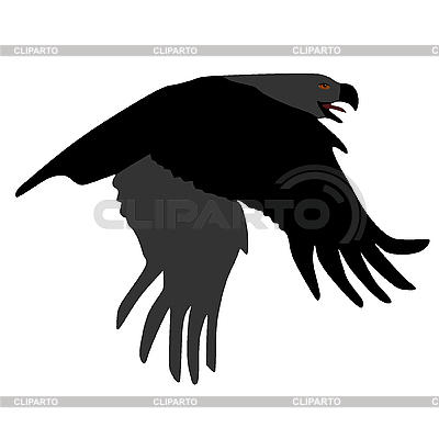 Eagle | Stock Vector Graphics |ID 3146078