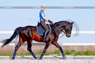 Mädchen geht auf braunem Pferd | Foto mit hoher Auflösung |ID 3298286