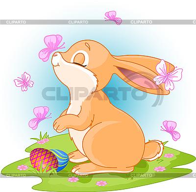 复活节兔子 | 向量插图 |ID 3199650