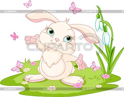 兔子和蝴蝶 | 向量插图 |ID 3199664