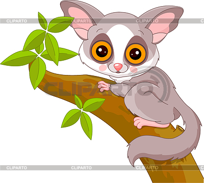 Funny Galago | Stock Vector Graphics |ID 3256848