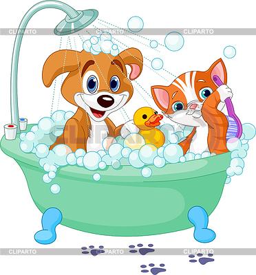 개와 고양이는 목욕을 갖는 | 벡터 클립 아트 |ID 3257435