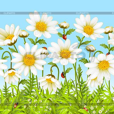 흰색 꽃과 녹색 잔디 | 벡터 클립 아트 |ID 3198533
