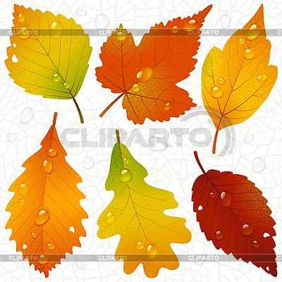 Лист зеленый, ветка с зелеными листьями, зеленое лиственное ... | 400x400