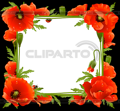 Poppy Floral Frame   Stock Vector Graphics  ID 3221776