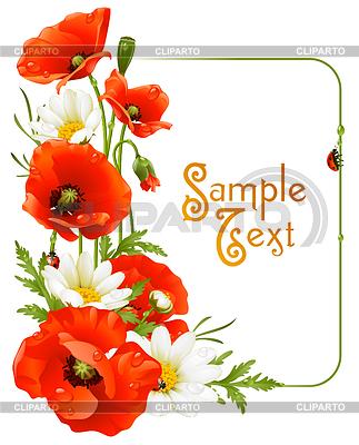 花框。罂粟和甘菊 | 向量插图 |ID 3222902