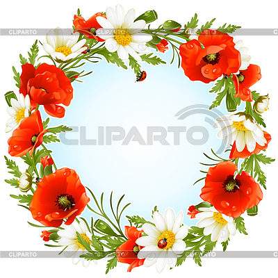 Camomile and poppy frame in the shape of circle | Stock Vector Graphics |ID 3222916