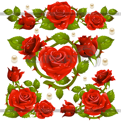 Rote Rosen-Design-Elemente | Stock Vektorgrafik |ID 3235581