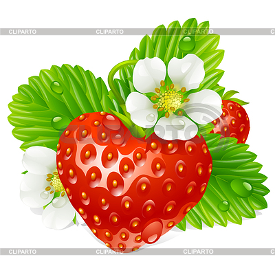 Strawberry in the shape of heart and white flower | Stock Vector Graphics |ID 3235600