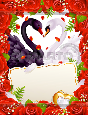 Greeting card with swans in love   Stock Vector Graphics  ID 3279161