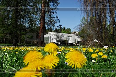 Burda Museum in Baden-Baden | High resolution stock photo |ID 3226561