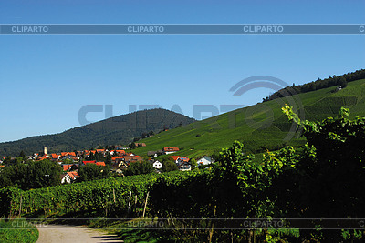 巴登 - 巴登的葡萄园Neuweier | 高分辨率照片 |ID 3226590