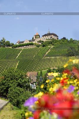 Castle Eberstein in Gernsbach | High resolution stock photo |ID 3230068