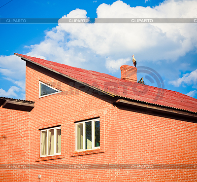 Beautiful stork stand on roof | High resolution stock photo |ID 3229615