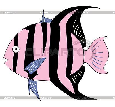 Tropikalna ryba   Klipart wektorowy  ID 3243552